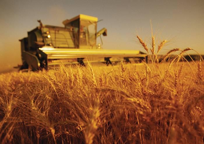 poljoprivreda u srbiji